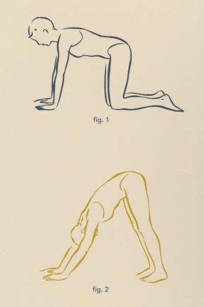 Downward dog illustration