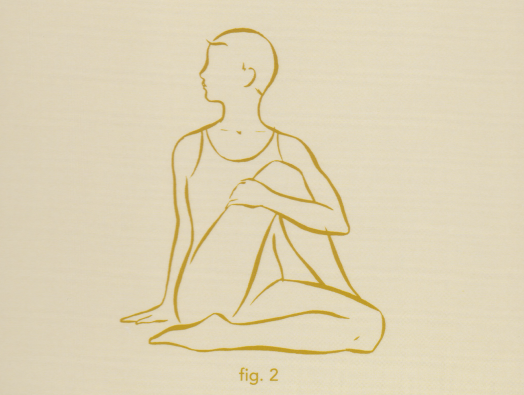 Yoga Deck Spinal Twist Figure Two